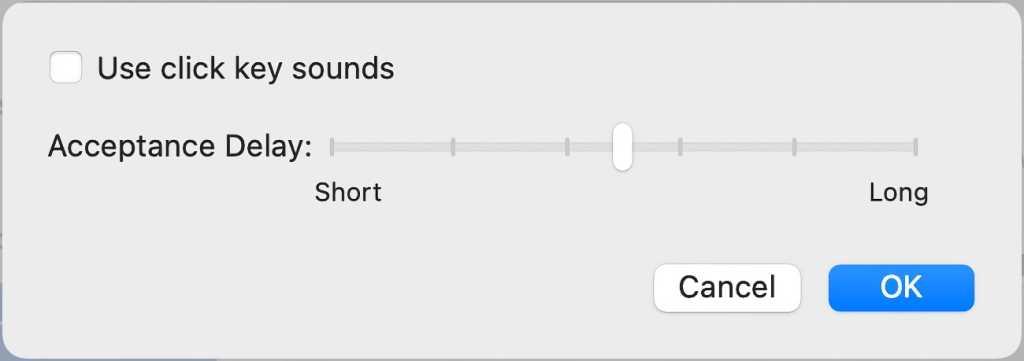 macOS Big Sur Slow Keys options
