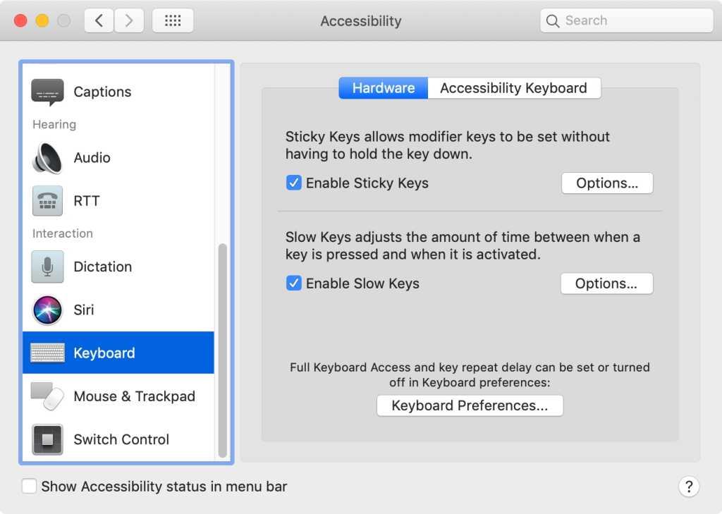 macOS Big Sur Sticky Keys Slow Keys system preferences