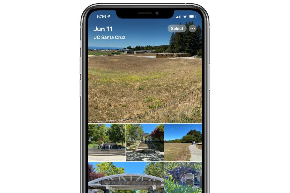 iOS 14 photo album iPhone